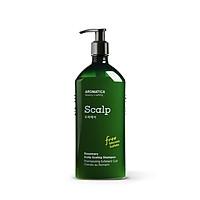 Dầu gội chăm sóc da đầu chiết xuất hương thảo Aromatica Rosemary Scalp Scaling Shampoo 400ml