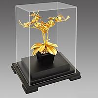 Cây Hoa lan trang trí để bàn - Quà tặng trang trí DD11