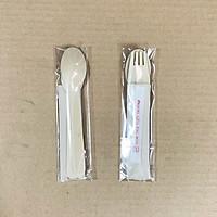 Bộ 50 muỗng nĩa dùng một lần có kèm tăm và khăn giấy