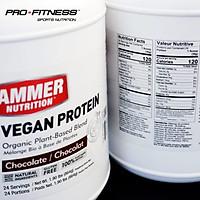 Sữa Bổ Sung Protein Dành Cho Người Ăn Chay - Hammer Nutrition Organic Vegan Protein 24 serving