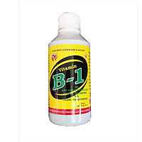 Vitamin B1 chuyên kích ra rễ và hoa cho cây cảnh và phong lan (chai 250ml)