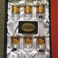 Bộ 6 Ly Shot Uống Rượu Mạnh 45ml họa tiết Versace