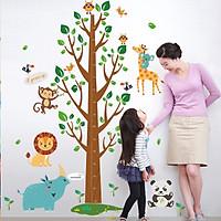 Miếng dán sticker Cleverbees đo chiều cho bé cao từ 60 cm tới 180 cm dán tường trang trí hình hoạt hình ngộ nghĩnh dễ dán Mẫu Clickmua678- Nhiều mẫu lựa chọn