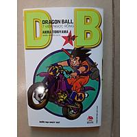 DragonBall - 7 viên ngọc rồng - Tập 14