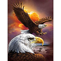 Bimkole 5D Diamond Painting Two Bald Eagles Full Drill DIY Rhinestone Pasted with Diamond Set Arts Craft Decorations (12x16inch)