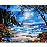 Tranh sơn dầu số hoá tự tô đã căn sẵn khung 40x50 cm (painting by number) - DZ667 Biển đêm trăng