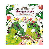Little Peep Through Books : Are You There Little Bunny