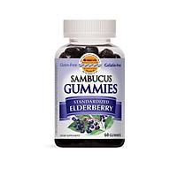 Thực Phẩm Chức Năng Kẹo Dẻo Tăng Sức Đề Kháng Nature's Way Sambucus Gummy, 60 Viên