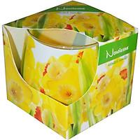 Ly nến thơm tinh dầu Admit Narcissus 100g QT025838 - thủy tiên vàng