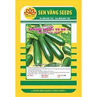 02 gói Hạt giống bí ngòi xanh Mỹ quả dài giống ngắn ngày năng suất cao VTS61