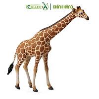 Mô hình thu nhỏ: Hươu Cao Cổ - Reticulated Giraffe, hiệu: CollectA, mã HS 9651060[88534] -  Chất liệu an toàn cho trẻ - Hàng chính hãng