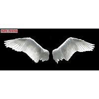 Tranh dán tường 3d đôi cánh thiên thần - ép kim sa - có sẵn keo TB22
