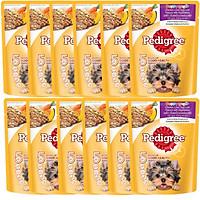Combo 12 gói sốt chó con Pedigree vị gà,gan,trứng và rau 80g/1 gói