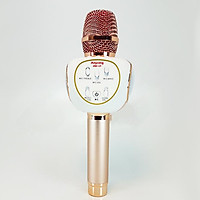 Mic Karaoke ANYSING ZBX-69 Đỉnh Cao Âm Nhạc Âm Thanh Cực Hay