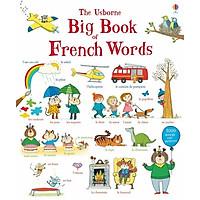 Usborne Big Book of French Words