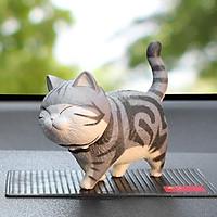 Mèo Hoàng Thượng Đa Sắc Thái
