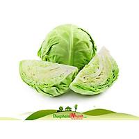[Chỉ Giao HCM] - Bắp cải trắng 1.2kg - 1.3kg