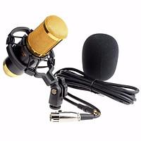 Denshitaro Micro thu âm BM800 Vàng đen D00-086