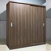 Tủ Quần Áo Cửa Lùa Cao Cấp Gia Đình FINE FT235 (Kích thước 1m6) Thiết kế sang trọng hiện đại