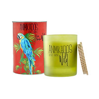 Nến thơm tinh dầu Ambient Parrot mùi Citrus Paradise
