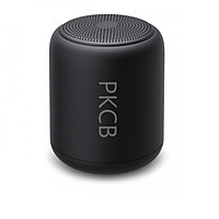 Loa Nghe nhạc bluetooth mini 5.0 Pin 10 Giờ PKCB120 Đen - Hàng Chính Hãng