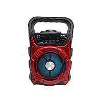 Loa Bluetooth Karaoke P668