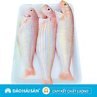 [Chỉ giao HCM] - Cá Đổng Tươi (Kg)