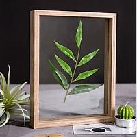 Khung ảnh bằng gỗ - kính để bàn
