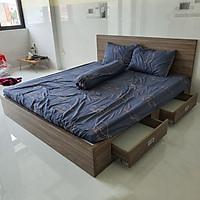 Giường Vai Đứng FINE FG159 (180cm x 200cm) Mẫu hiện đại tối giản, thiết kế đẹp sang trọng