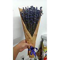Bó hoa oải hương lavender khô bó giấy báo FREE SHIP Tặng túi thơm