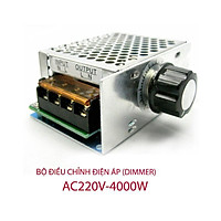 Chiết áp, bộ điều khiển tốc độ động cơ , ánh sáng công suất lớn 4000W 0-220V
