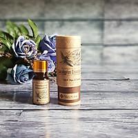 Tinh dầu khuynh diệp nguyên chất Ecolife - Eucalyptus Essential Oil
