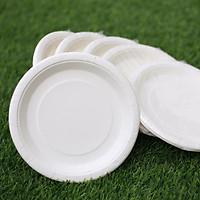 Dĩa giấy trắng 19cm - Combo 50 cái