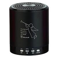 Loa Bluetooth Thẻ Nhớ USB NTC T-2020A - Hàng Chính Hãng