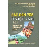 Các Dân Tộc Ở Việt Nam - Tập 4 - Quyển 2: Nhóm Ngôn Ngữ Hán Và Mã Lai - Đa đảo