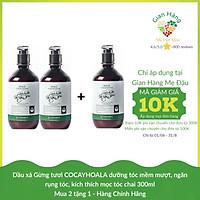 Dầu xả Gừng tươi  COCAYHOALA  dưỡng tóc mềm mượt, ngăn rụng tóc, kích thích mọc tóc  chai 300ml - Mua 2 tặng 1