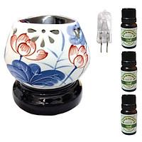 3 tinh dầu quế Eco 10ml và đèn xông tinh dầu tam giác hoa sen xanh lam và 1 bóng đèn