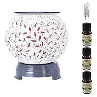 Đèn xông tinh dầu trắng đế nhựa AH81 và 3 tinh dầu sả chanh Eco 10ml và 1 bóng đèn