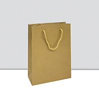 COMBO 20 TÚI GIẤY KRAFT V54 25 x 18.5 x 8 cm
