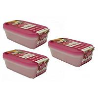 Combo 03 Bộ hộp thực phẩm Nakaya 800ml - Nội địa Nhật Bản (02 hộp/Bộ)