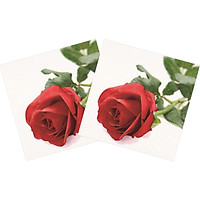 Combo 2 Xấp Khăn Giấy Ăn Trang Trí Bàn Tiệc Tissue Napkins Design Ti-Flair 367825 (33 x 33 cm) - 40 tờ
