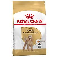 Thức Ăn Cho Chó Poodle Royal Canin Poodle Adult  500g