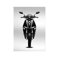 Xe motor điện VinFast Theon