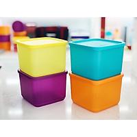 Hộp Bảo Quản Thực Phẩm Medium Summer Fresh Tupperware, Hộp Trữ Khô, Nhựa Nguyên Sinh An Toàn