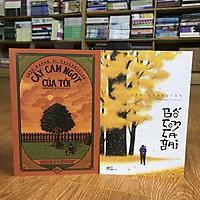 Combo sách Bố Con Cá Gai + Cây Cam Ngọt Của Tôi (sách hay về một thời tuổi thơ) tặng kèm bookmark