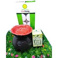 Combo đèn xông tinh dầu nến hoa mai + tinh dầu sả chanh 10ml Bio Aroma tặng kèm 10 viên nến tealight (đèn giao màu ngẫu nhiên)