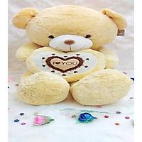 Gấu bông Teddy Ôm Tim LOVE Size 1m2