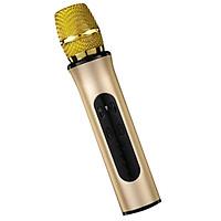 Micro Bluetooth Karaoke Không Dây hàng cao cấp Kết Nối Thẻ Nhớ, tai nghe 3.5 mm - Hàng chính hãng