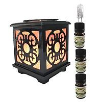 Đèn xông tinh dầu gỗ vuông AH43 và 3 tinh dầu bạc hà Eco 10ml và 1 bóng đèn