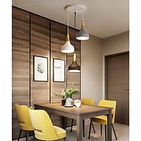 Đèn thả  trang trí bàn ăn, phòng khách DTT67 cao cấp